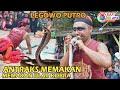 Legowo Putro | Antraksi Mangan Ulo Kobra Berbisa!! Live Pelem Pare Kediri
