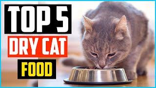 Top 5 Best Dry Cat Food Review in 2020