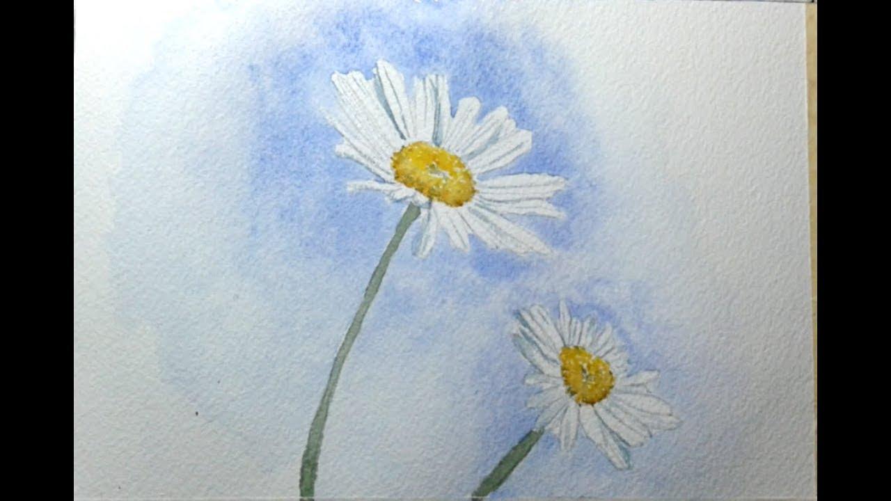 come dipingere due semplici margherite ad acquerello in 10