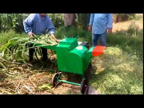 Mesin cacah rumput gajah