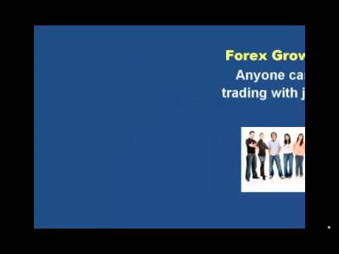 Forex Growth Bot   Low Risk Bot An Excellent Tool For Newbie