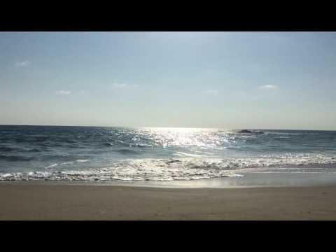 Laguna Beach Vibez Summer Sixteen