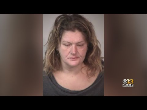 Mark - Intoxicated woman arrested with a suitcase filled with cats. Yes, cats.