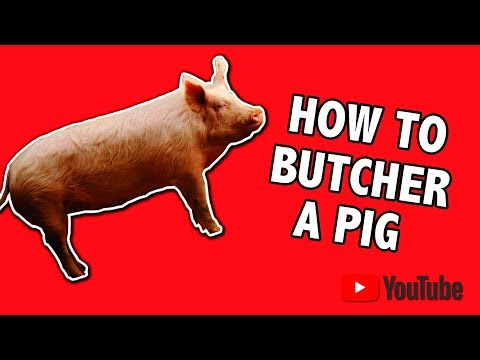 Thumbnail: how To Butcher A Pig, Start To Finish The Easy Way