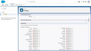 Control Access to Fields  Data Security Trailhead Badge Challenge