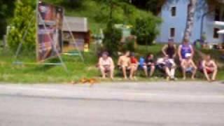 20VTurboSau Gibt Gummi in Keutschach see 09