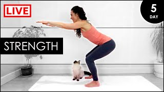 BEGINNERS Yoga For All Over STRENGTH / 31 Day LIVE Yoga Challenge (Day 5)