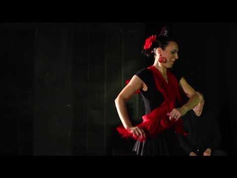 Flamenco Group Warwickshire