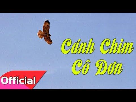 Cánh Chim Cô Đơn (St. Trịnh Công Sơn) - Hoàng Kim [Karaoke Beat MV]