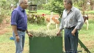 RIC Rural aborda a produção de feno para consumo do gado leiteiro