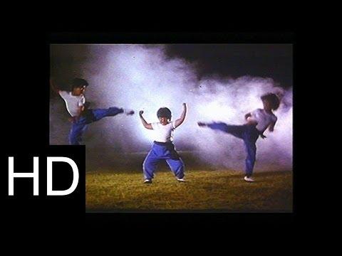 Al Ataque Kung-Fu Kids