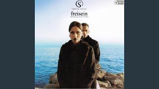 Freisein introducing Xavier Naidoo (Nachtschicht am Meer Radio Edit)