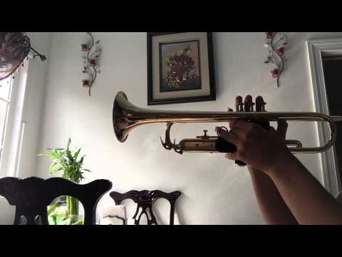 royal trumpet sound effect