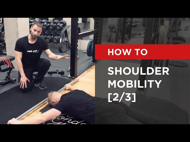 SERIES: Shoulder Mobility [2/3]