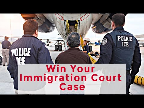 Immigration Court - How to Win Your Case