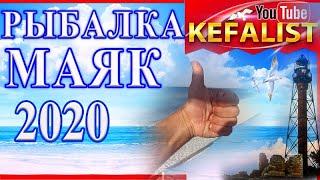 КЕФАЛЬ РЫБАЛКА ОСТРОВ ДЖАРЫЛГАЧ МАЯК 2020 Рыбалка на Черном море в Скадовске рыбалка с берега