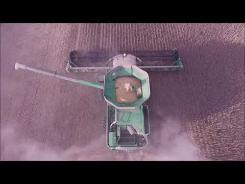 KLEIN FARMS LIBERTY, IN DRONE VIDEO CUTTING SOYBEANS ON THE HAMMERLE FARM OCT 9TH 2018
