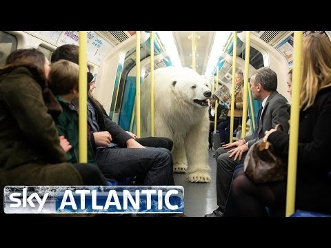 Polar Bear Let Loose In London - Fortitude