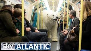 Polar Bear Let Loose In London - Fortitude