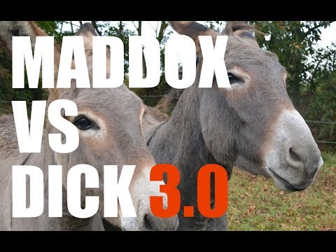 Maddox v. Dick 3.0. I Understand Masterson Getting Sued but Why Foundation Digital, Boser and Baker?