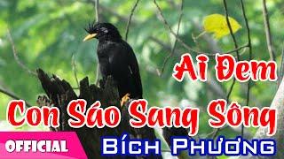 Ai Đem Con Sáo Sang Sông - Bích Phượng [Official MV HD]