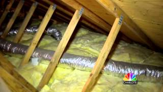 Mom Finds Ex-Boyfriend Living in Attic 12-Years After Breakup