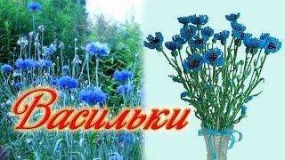 DIY / ВАСИЛЬКИ ИЗ БИСЕРА / Мастер-класс / Цветы из бисера / beaded flowers / Бисероплетение