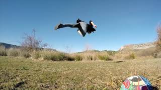 FREEDOM TO BE (Acro - Dance - Movement)