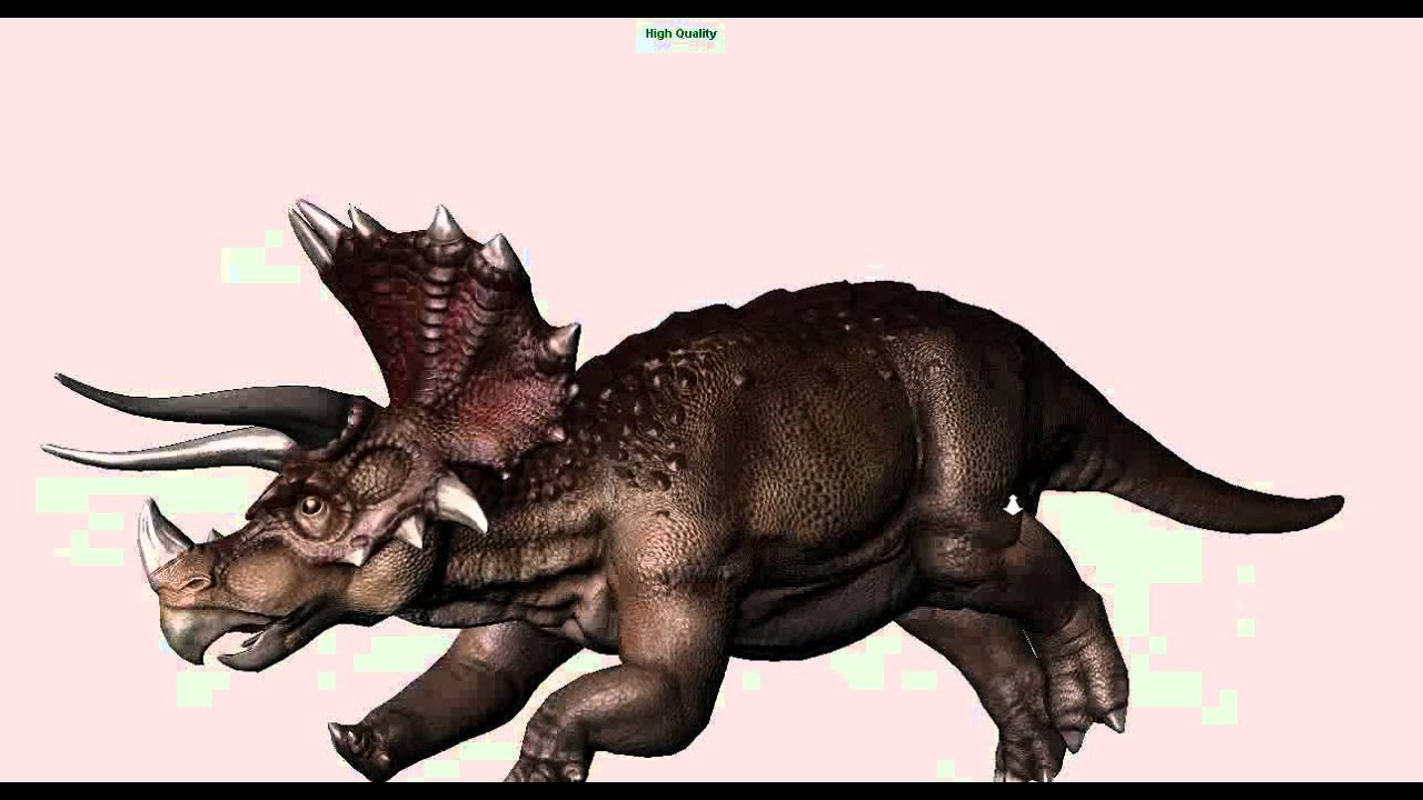 triceratops essay All about dinosaurs read about dinosaur discoveries including gigantic meat-eating dinosaurs, earliest dinosaurs and more dinosaur pictures and articles.