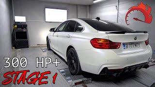 AM SOFTAT BMW-UL   CATI CAI ARE ACUM? (STAGE 1)