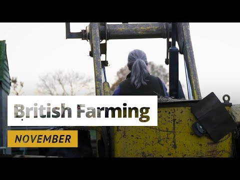 British Farming | 12 Months On A UK Farm: November