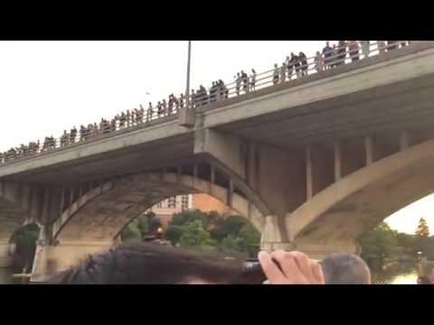 South Congress Bridge Bats  Austin Texas August 2016