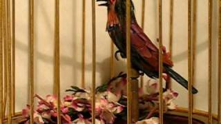 Musical Birdcage