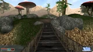 Легендарные иргы - Morrowind