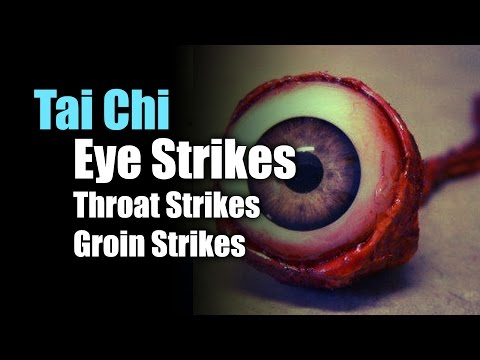 Combat Tai Chi Groin Strikes, Throat Strikes, Eye Strikes & Fighting Stances
