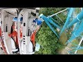 Alpengeist (4K On-Ride Back) Busch Gardens Williamsburg