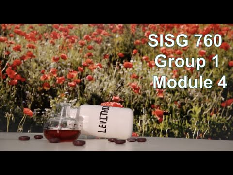 american-university-sisg-760:-module-4- -week-8- -public-authority-and-the-control-of-violence