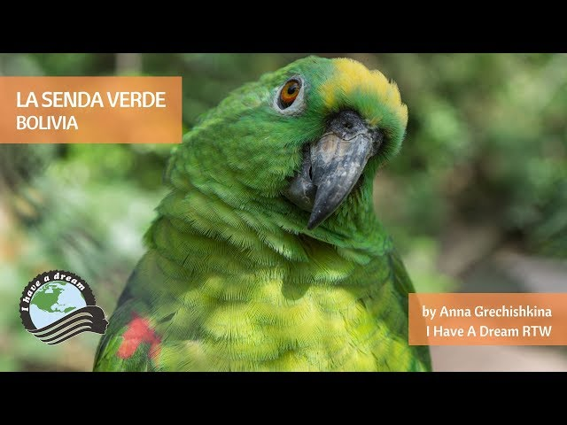 La Senda Verde Wildlife Sanctuary, Bolivia