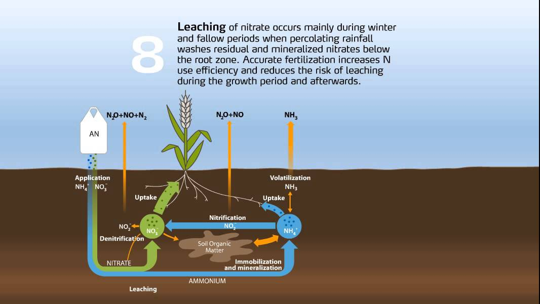 the nitrogen cycle in agriculture youtube