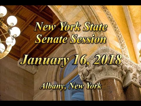 New York State Senate Session - 01/16/18