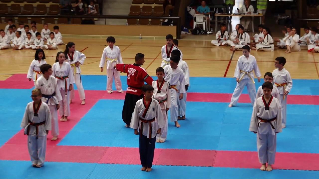 club taekwondo yecla