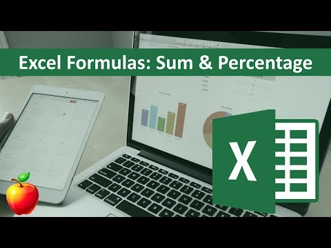 Excel Basic Formulas: Sum and Percentage