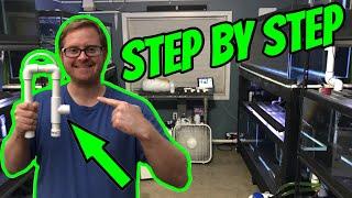 CHEAP DIY Aquarium Overflow , How I BUILT IT