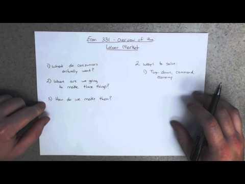 Labor Economics - Overview of the Labor Market