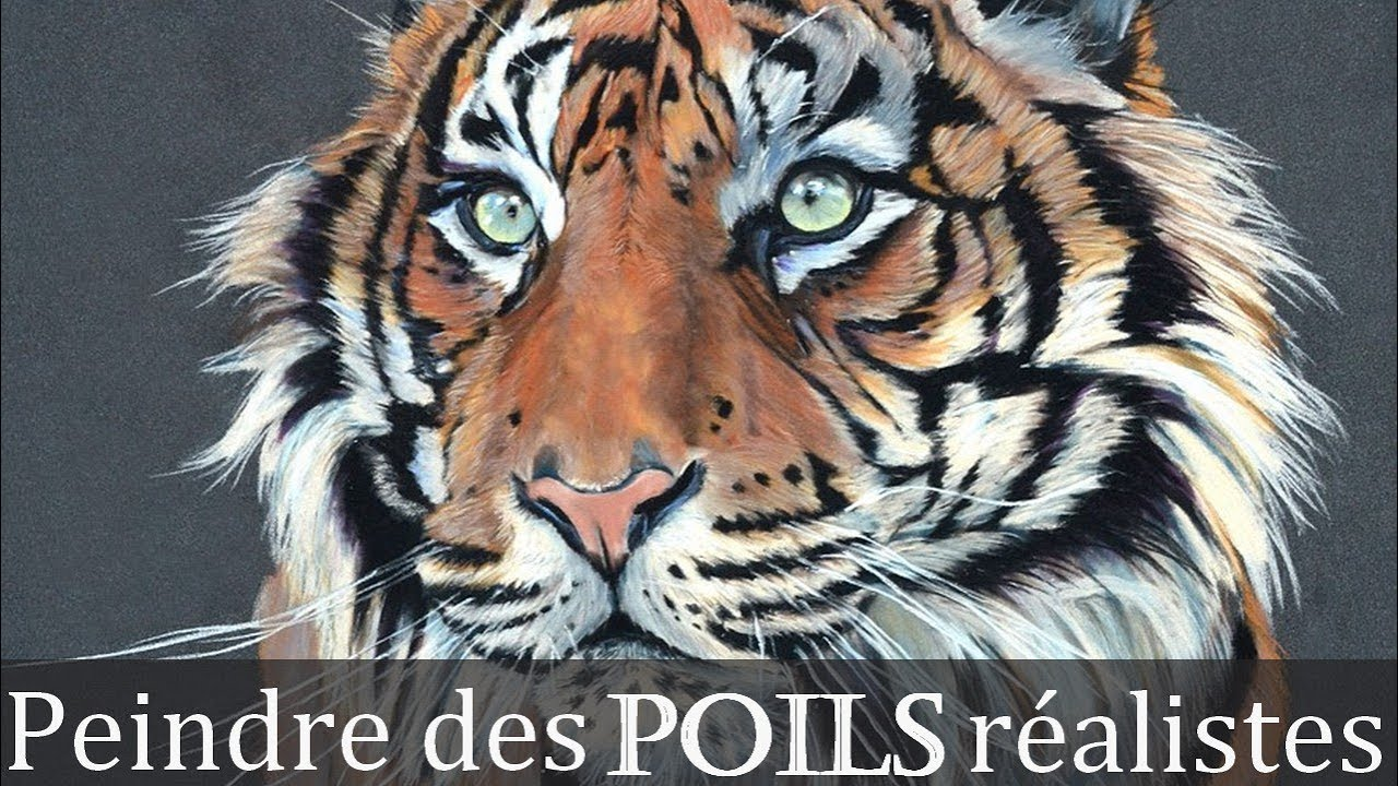 Tigre De Sumatra Aux Pastels Artiste Animalier