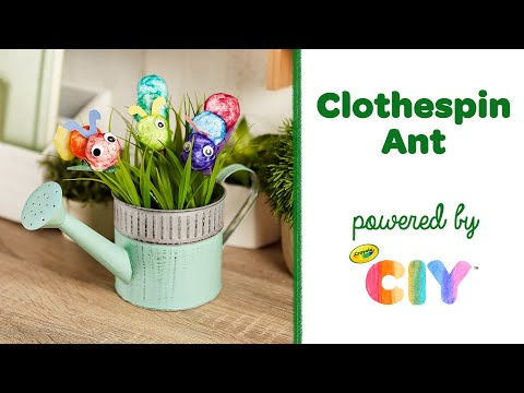 clothespin-ant-craft-for-kids,-easy-at-home-craft-||-crayola-ciy