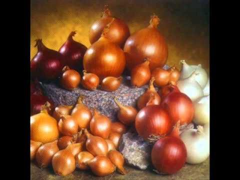 El Sistema Agrícola Azteca: Pasado, Presente y Futuro. IPEM 204