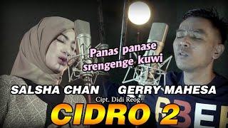 Cidro 2 - Salsha Chan Feat Gerry Mahesa - Versi Koplo( Official Music Video )