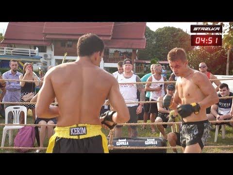 Wild Boxer vs