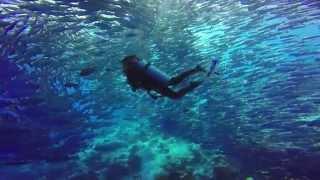 Diving in Sipadan (สิปาดัน) Island 2015 - [GoPro Hero4]